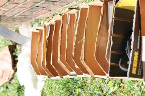 penny-bates-boxes 43759351021 o